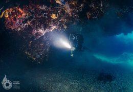 Artatore Reef Diving, M. Radović